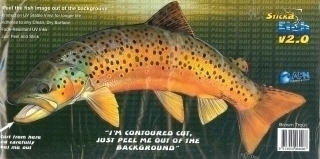 Brown-Trout.jpg