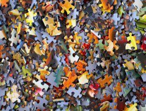 Trivia & Puzzles